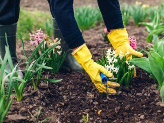 April Garten Arbeit