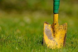 Kümmern Sie sich um Ihren Rasen