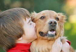 Tiere werden schnell zum besten Freund des Kindes