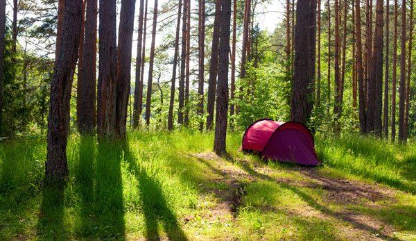 Wildes Campen ist in Deutschland verboten