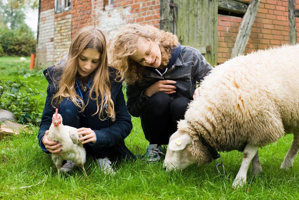 Urlaub Familie Bauernhof