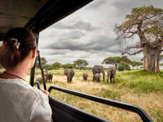 nationalparks kenia tipps