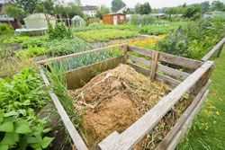 Richtig kompostieren ist gar nicht so schwer