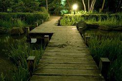 Beleuchtung für den Garten - Sicherheit und Wohlfühlen