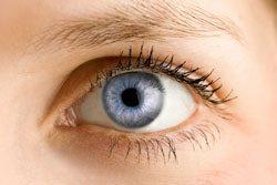 Falsche Wimpern anbringen und den eigenen Wimpernkranz verdichten