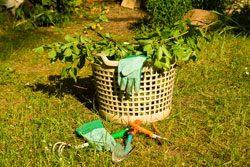 Gartenarbeit im Oktober - Machen Sie den Garten winterfest