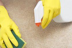 Sie sollten regelmäßig Ihren Teppich imprägnieren