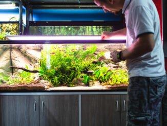 aquarium abdichten nleitung tipps