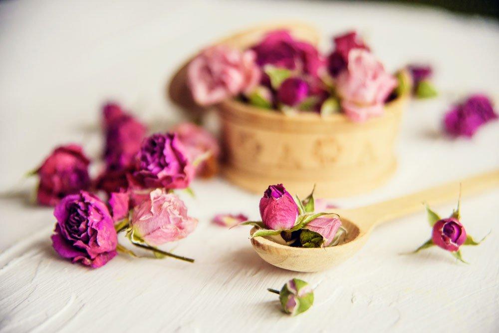 rosen konservieren glyzerin kieselgel klarlack tipps