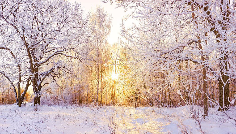 Versicherungsschutz pruefen im Winter