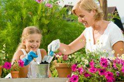 Gartenarbeit im Mai – Das müssen Sie jetzt tun