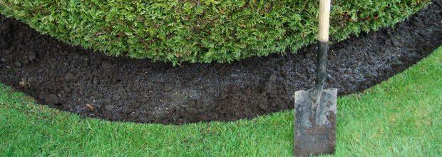 Perfekt ausgehobener Pflanzgraben