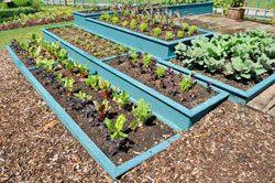 Garten Neu Anlegen ? Tipps Für Die Planung Nutzgarten Anlegen Tipps Planung Gartengestaltung