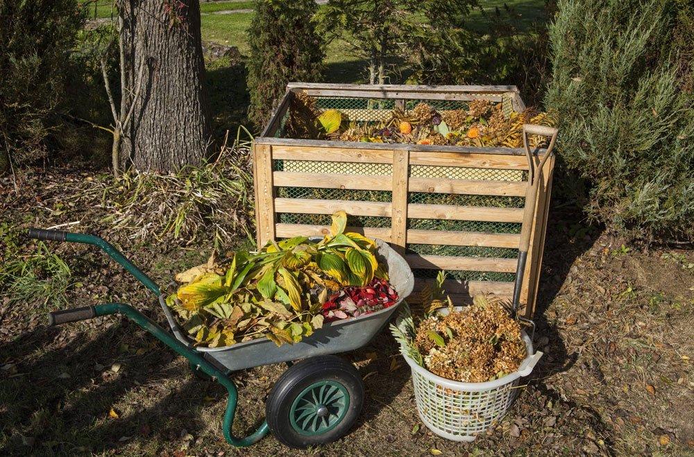 komposthaufen anlegen anleitung tipps garten