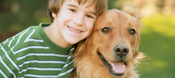 Hund anschaffen oder nicht? – Darüber sollten Sie sich vorher im Klaren sein