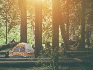 wild campen tipps