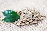 Kaffee Rohbohnen