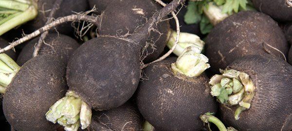 schwarzes Gemüse