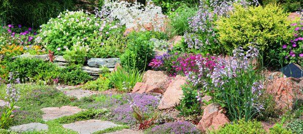 Gartenarbeit Juni