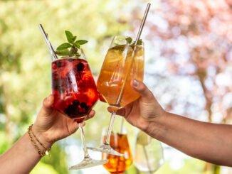 cocktails mixen selber tipps anleitung zubehör