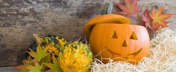 Halloween-Kürbis basteln - 3 kreative Ideen vorgestellt