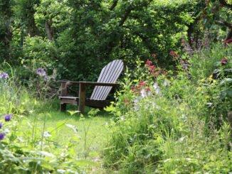 naturgarten tipps