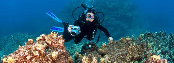 Unterwasserfotografie mit Kompaktkameras