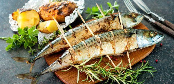 Makrele grillen