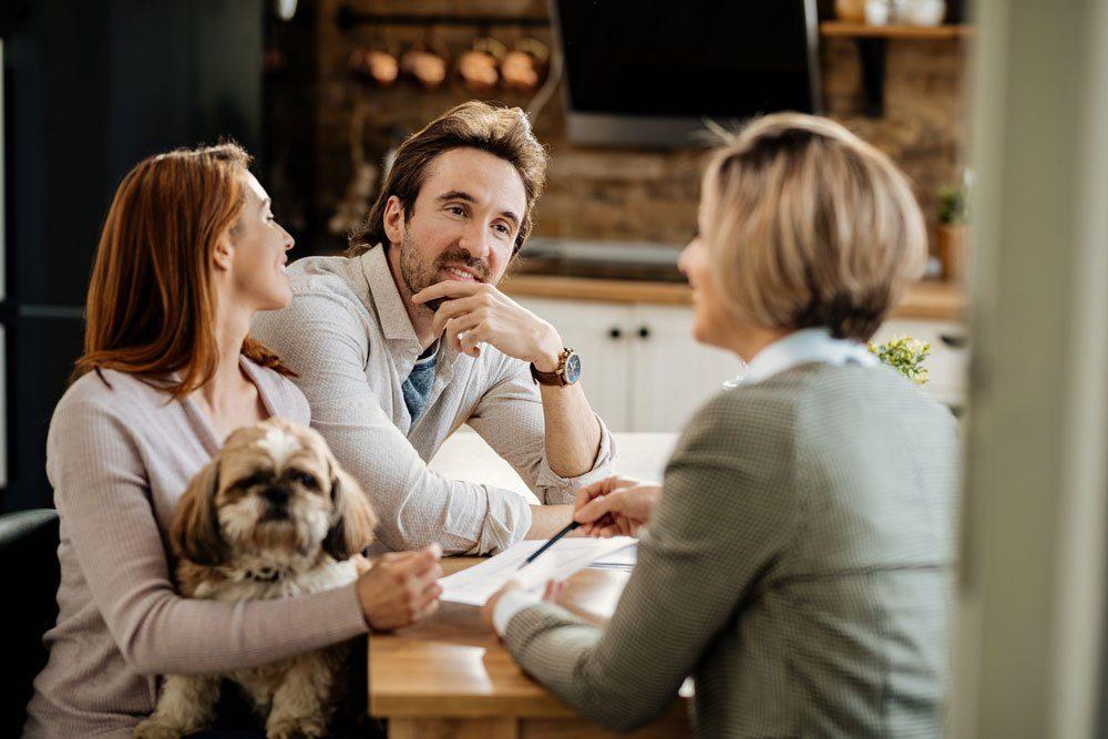 hunderversicherung tipps hundehaftpflicht